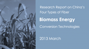 Research Report on China's Four Types of Biomass Energy Conversion Technologies